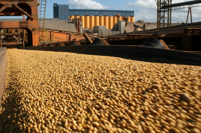 Exportaciones de Mendoza crecen más que la media nacional