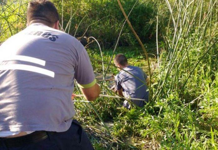 Locutor salteño descuartizó a su novia y fingía buscarla desesperado — Corrientes