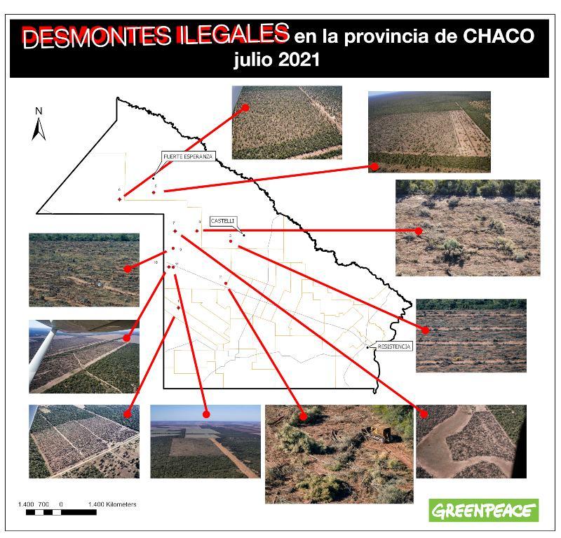 Greenpeace detectó 10 mil hectáreas de desmontes ilegales en Chaco